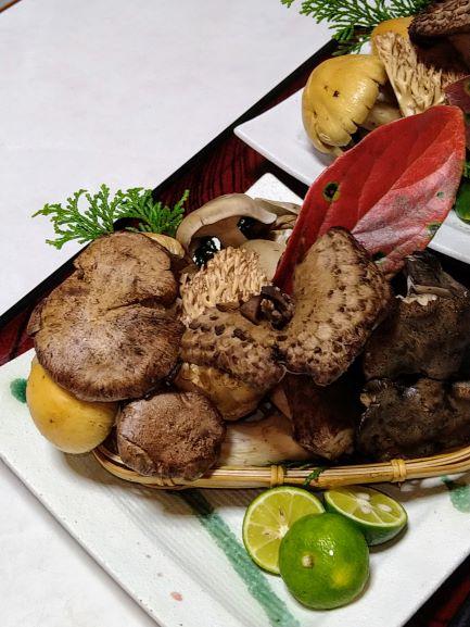 中津川天然きのこ料理国産松茸料理専門店きのこ鍋お取り寄せおとりよせおうちでお鍋幻きのこ日本料理美菜ガルテンふるかわおとりよせお取り寄せおうちごはん