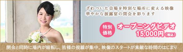 オープニングビデオ15,000円
