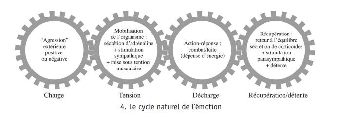 le-cycle-naturel-de-l-emotion