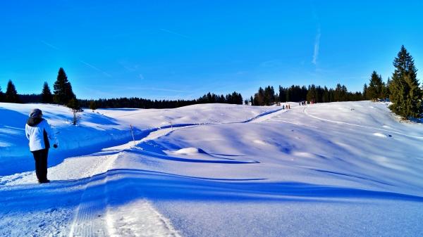 Hemmersuppenalm Winterwanderweg