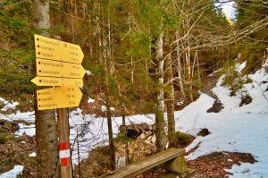 Schneeschuhtour Heuberg