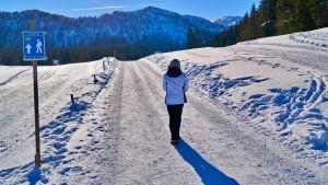 Premium Winterwanderweg Hemmersuppenalm