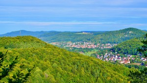 1000 Höhenmeter Weg Pommelsbrunn