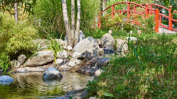 Leyk's Lotos Garten