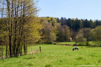 Wandern Moritzberg