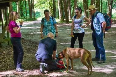 wandern mit Hund Hersbrucker Schweiz