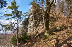 Wandern Hersbrucker Schweiz