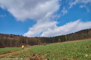 Rundwanderung Hersbrucker Schweiz
