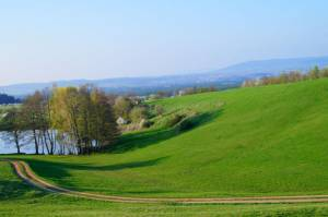 Kirschblütenweg Kalchreuth