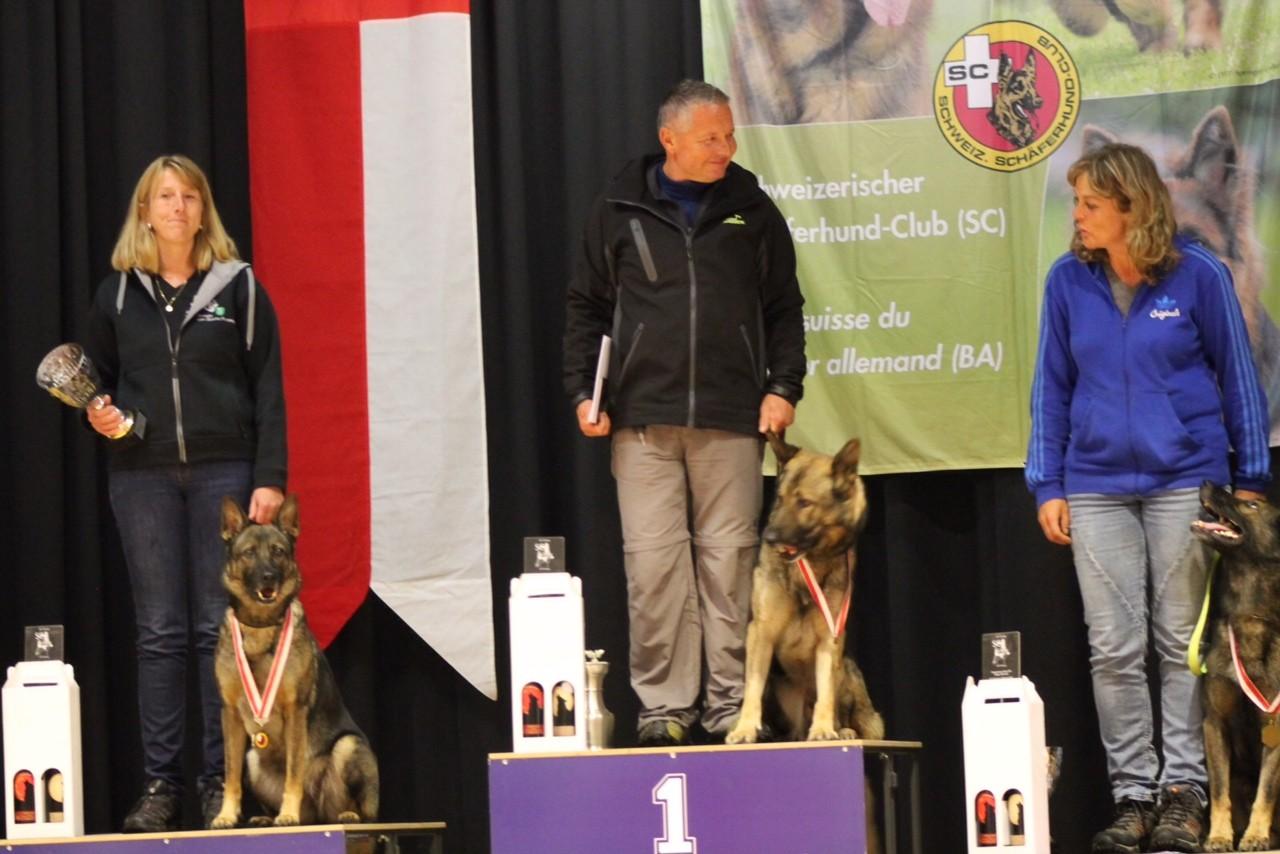 IPO SC Schweizermeister 2015, Ueli Kappeler mit Basko von der Viamala