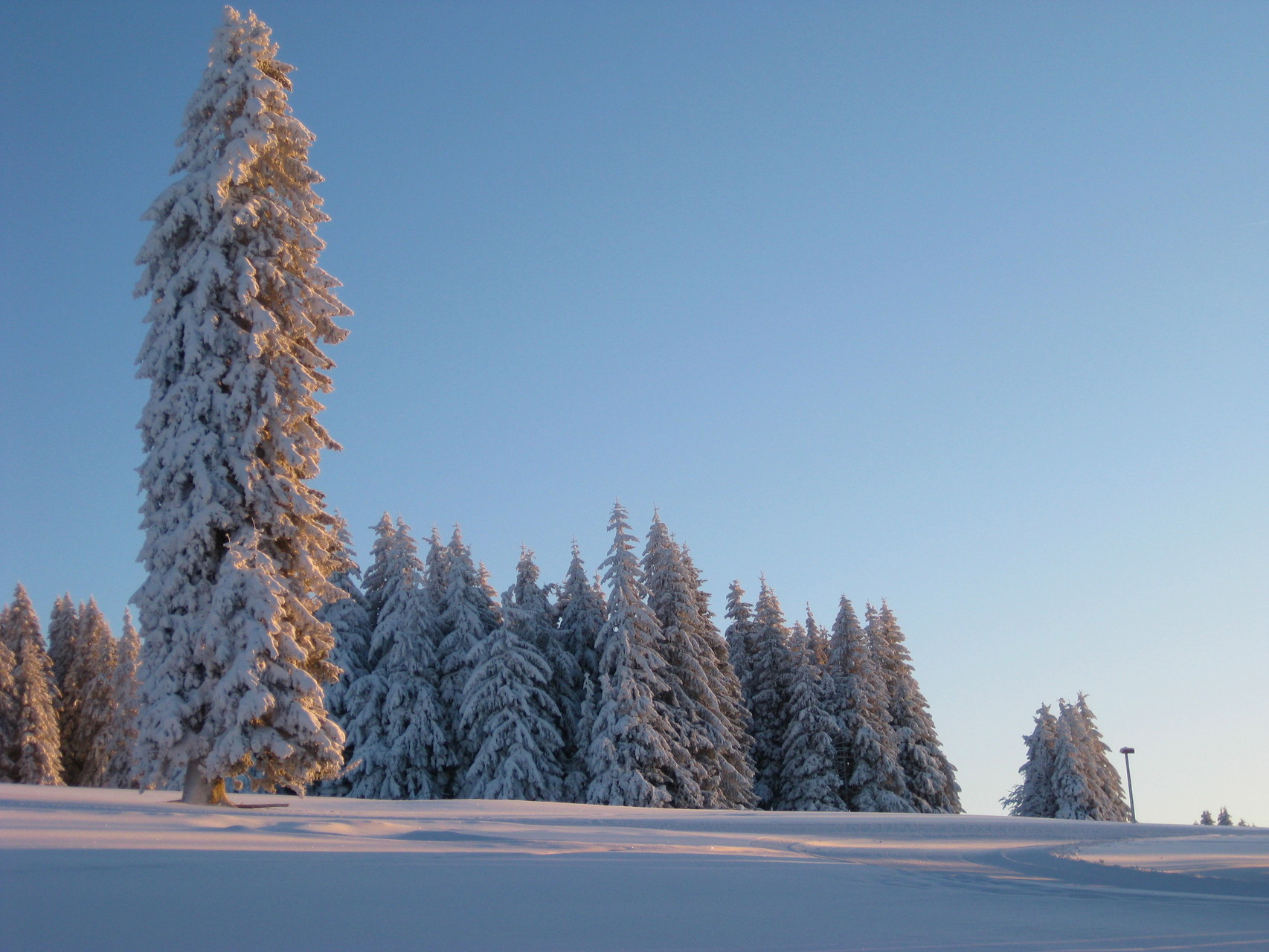 Winterlandschaft am Feldberg