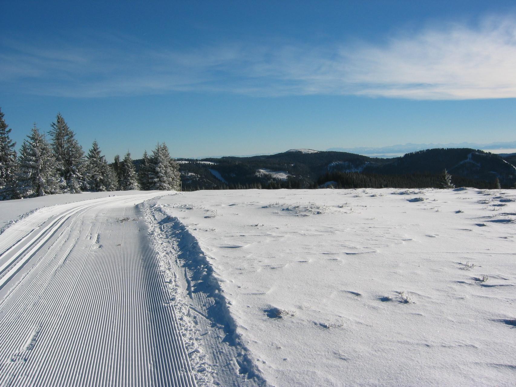 Top Langlauf-Loipen in der Umgebung