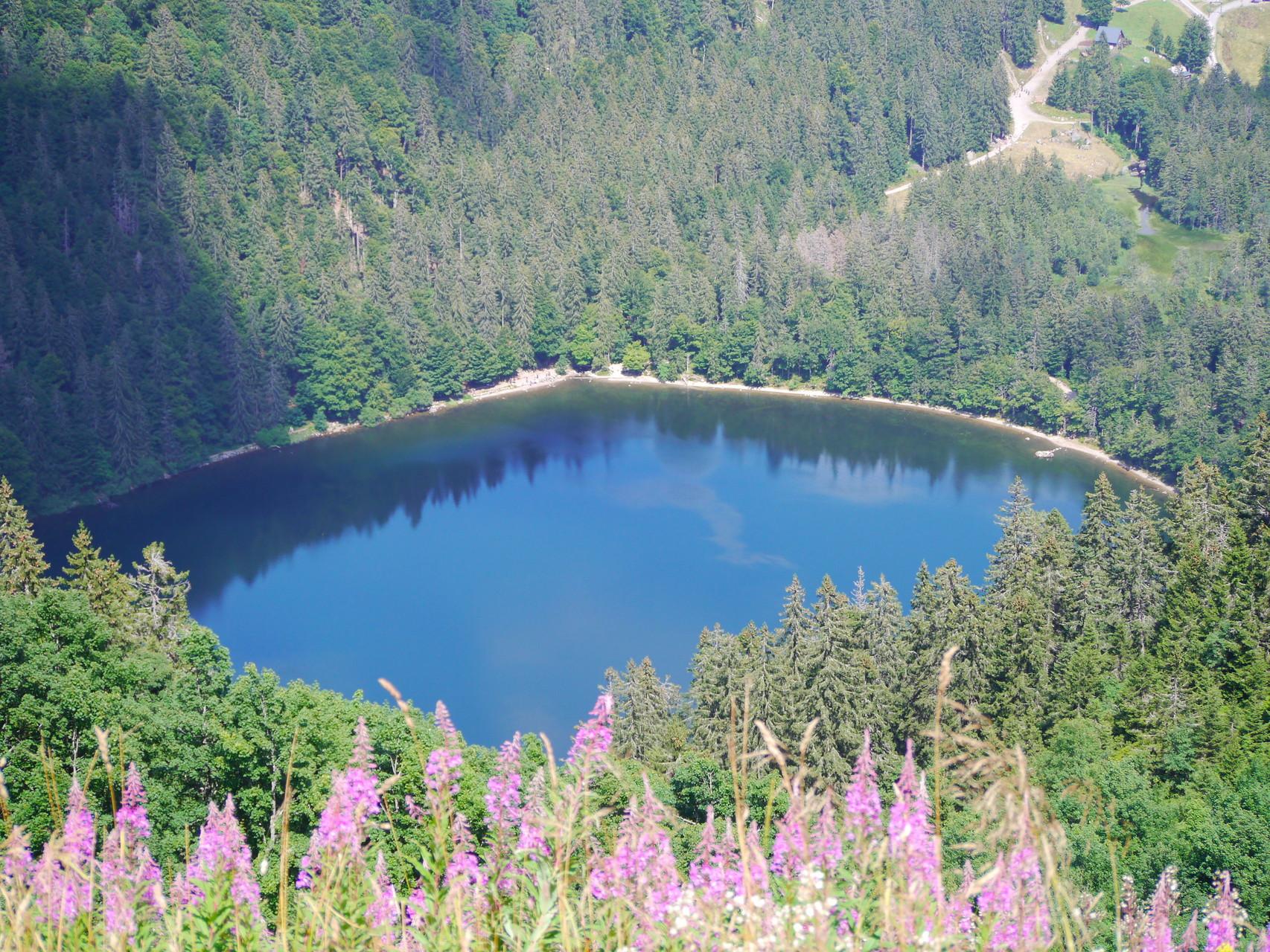 Feldsee: Auch im Sommer gibt es tolle Ausflugsziele