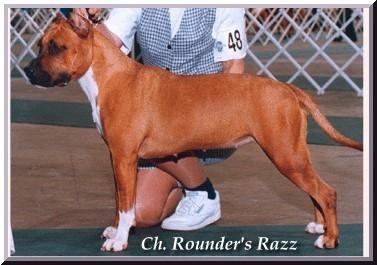 Rounder's Full Moon Razzmataz