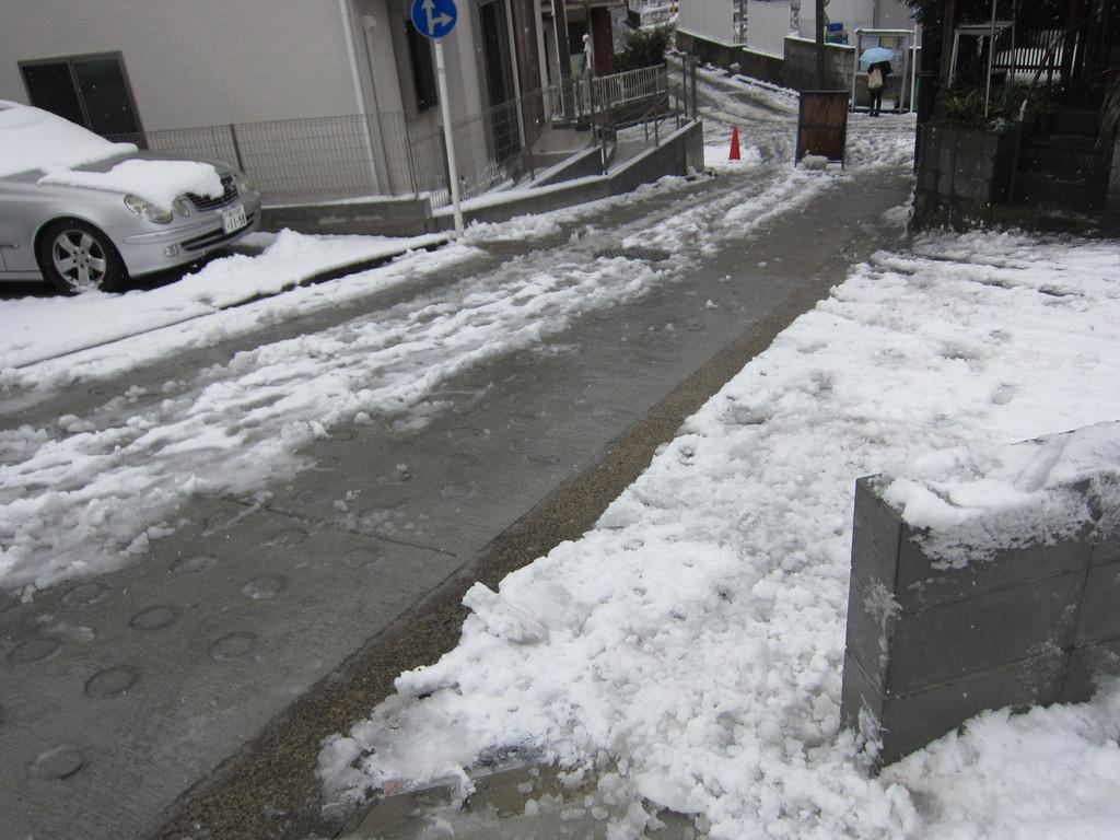 道路も雪かき。ずーっと雪かき。面白くて止まらない。