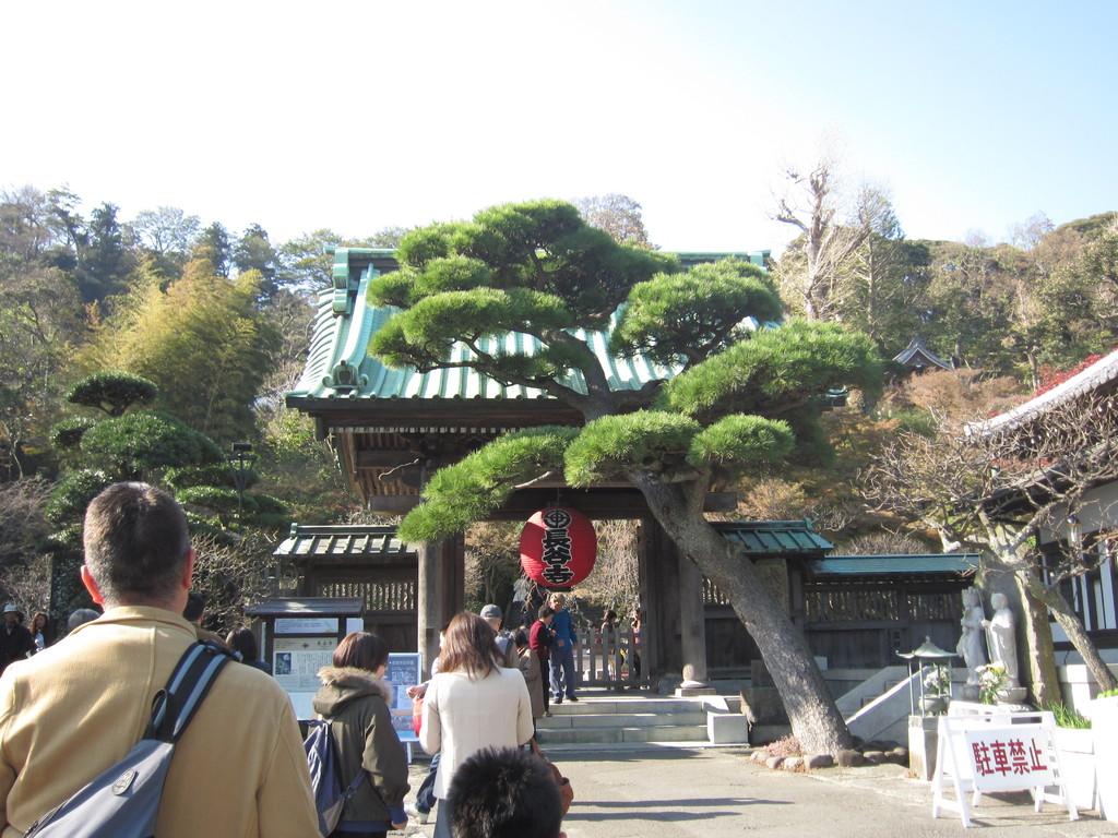 歩いて5分で「長谷寺」へ。20数年ぶり
