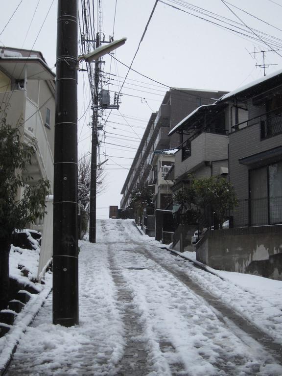 我が家の前の道路。ゲレンデのように滑ります。車両通行止めに