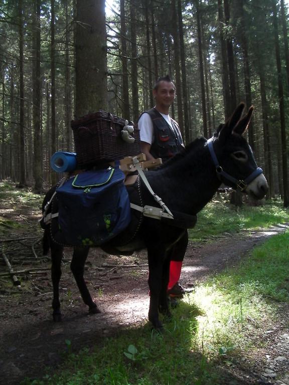 Brunos erste Wanderung mit einem Packsattel