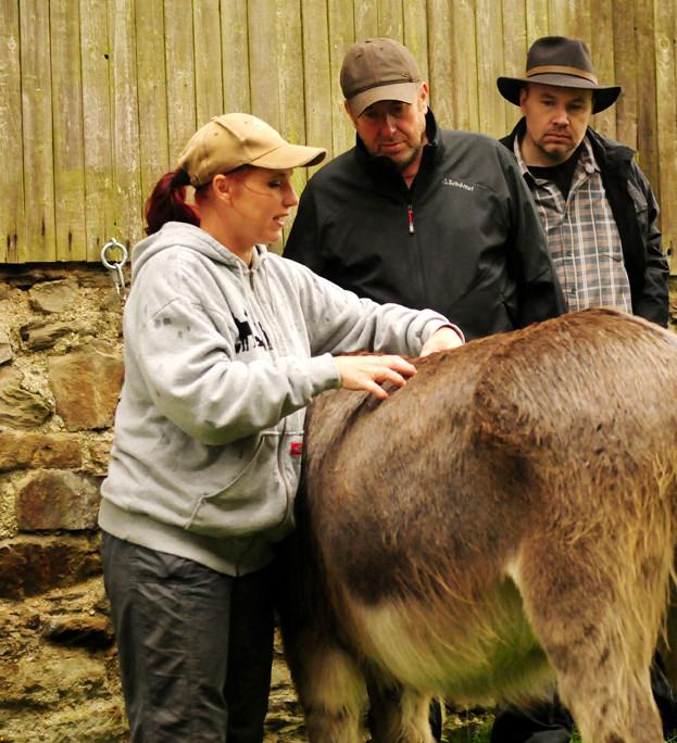 Judith Schmidt erklärt, wo Esel gerne überall massiert werden. Foto: Alexandra Evang