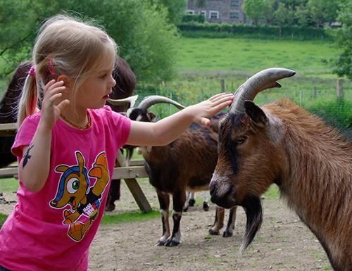 2014: Kinder sind von den Hörnern fasziniert.