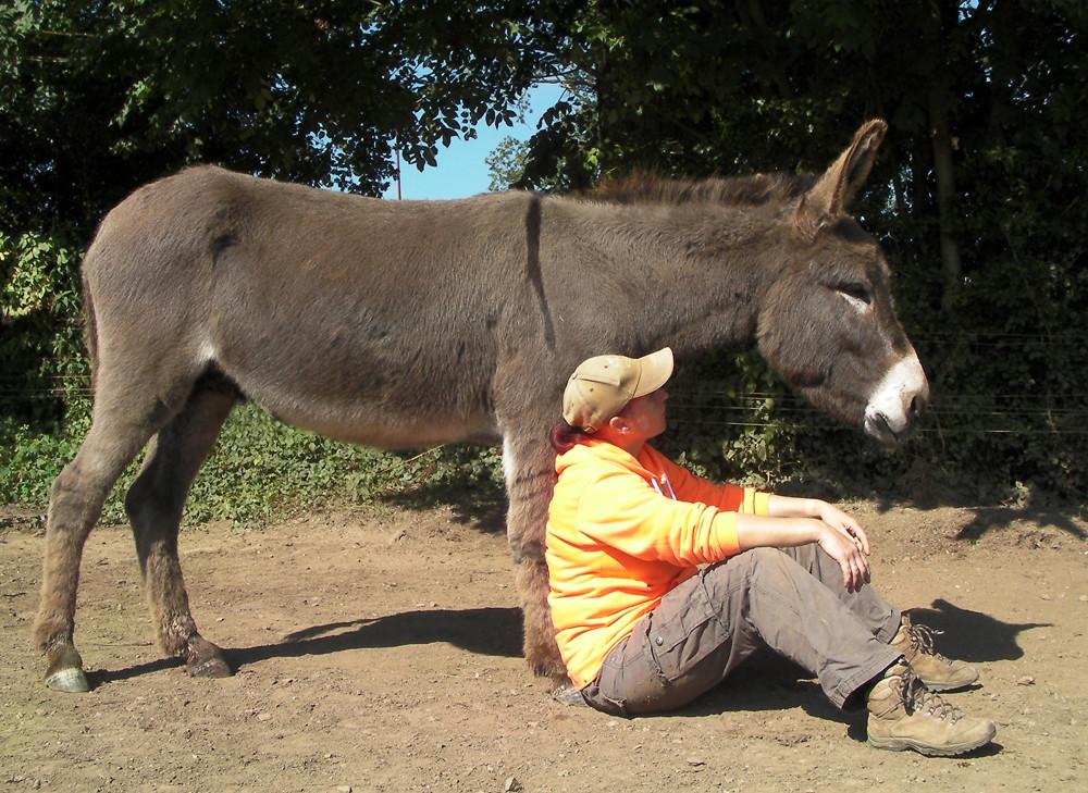 Judith benutzt Ephraims Beine auch mal als Rückenlehne.