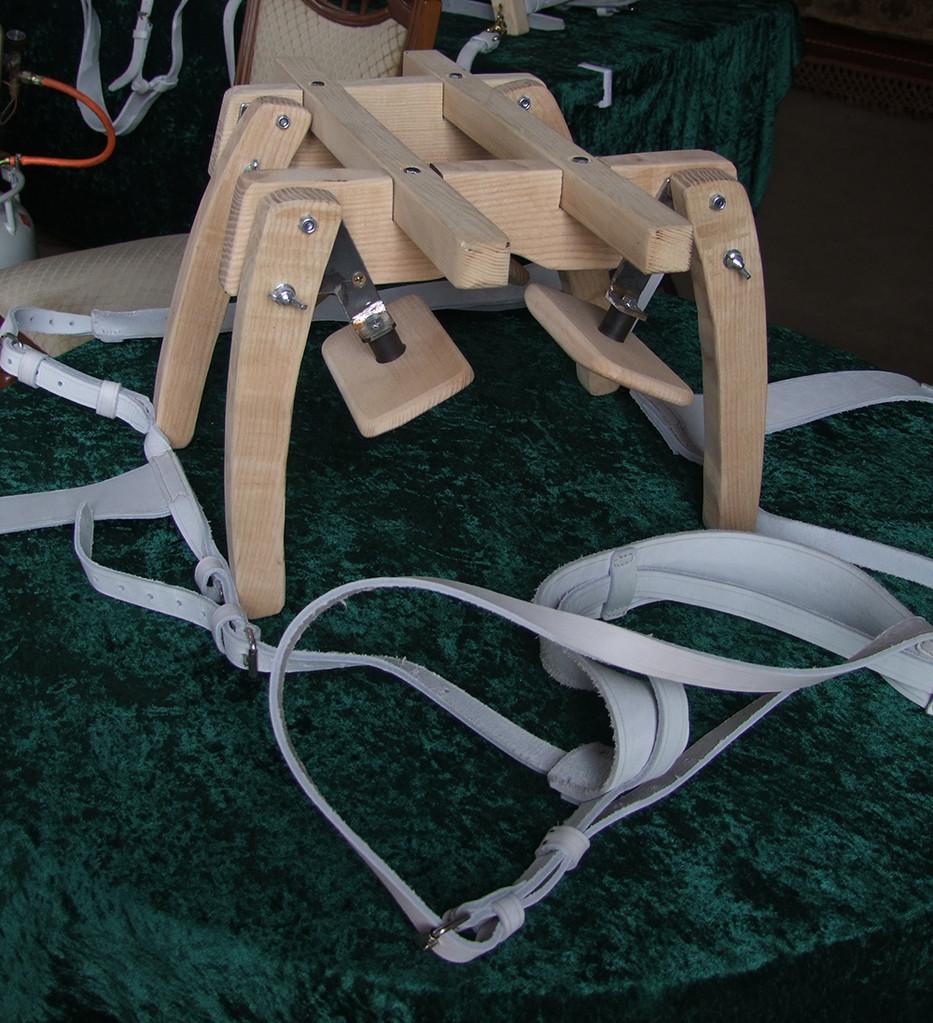 2011: Der Prototyp für einen Miniesel.
