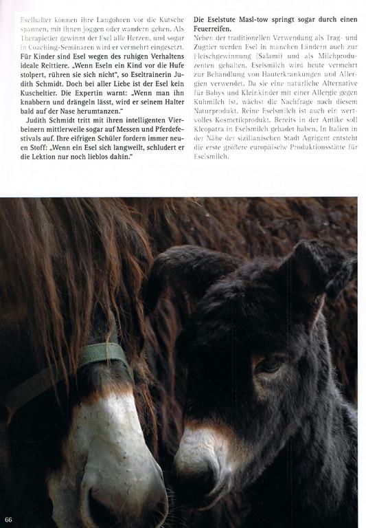 """Zeitung """"Mensch und Natur"""" Winter 2010/2011"""