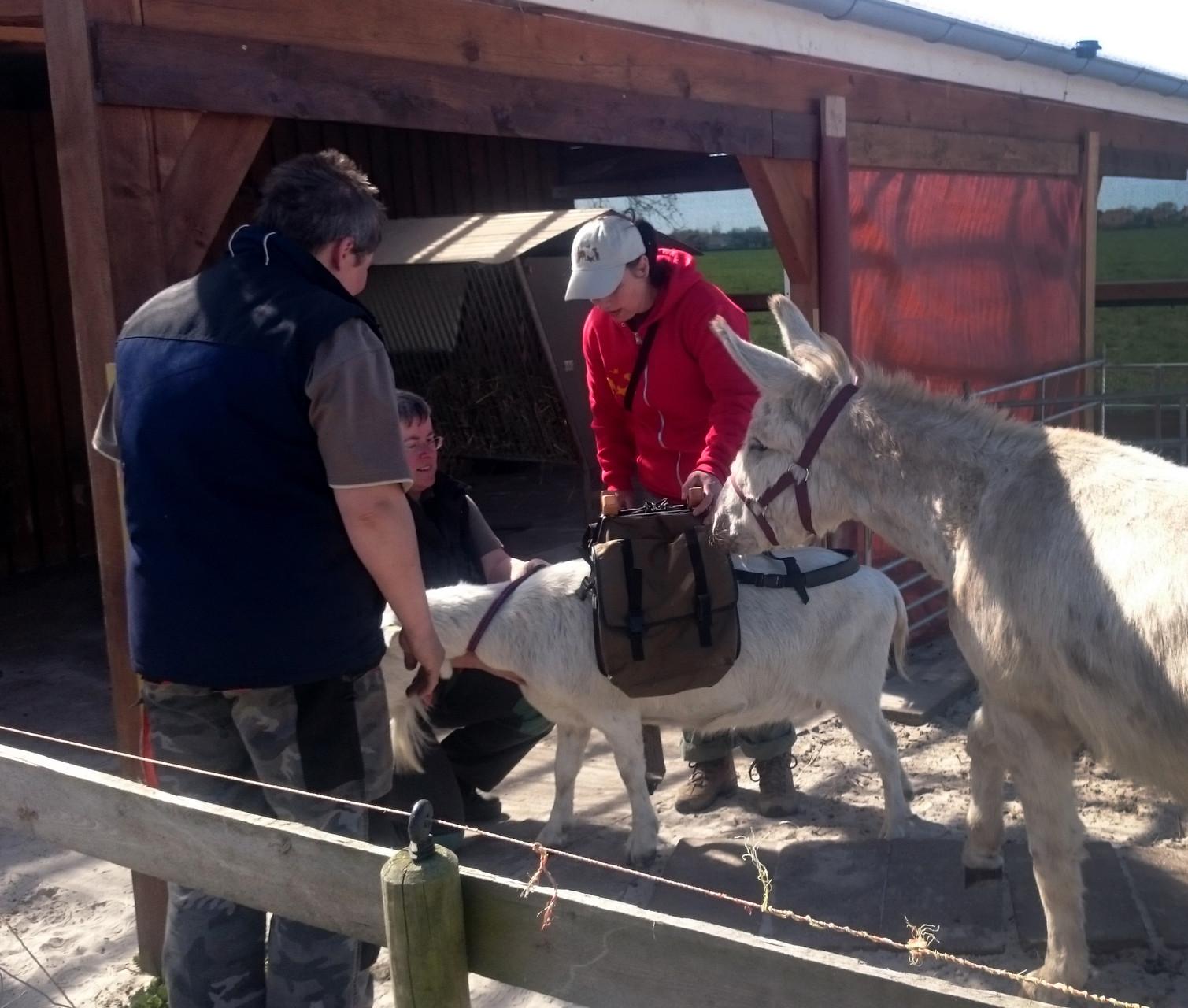 Packsattelkunde war vom großen Interesse. Nicht nur für Esel, sondern auch für Ziegentrekking hatten wir alles dabei.