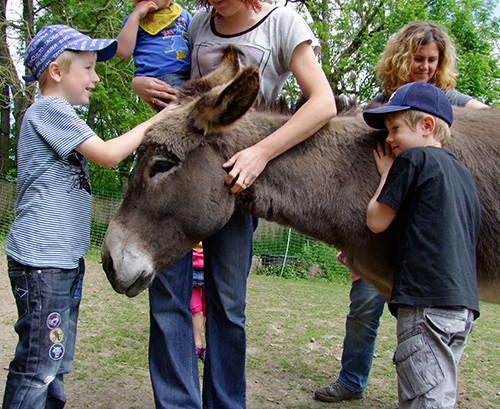 2014: Kinder und Esel kamen auf ihre Kosten.