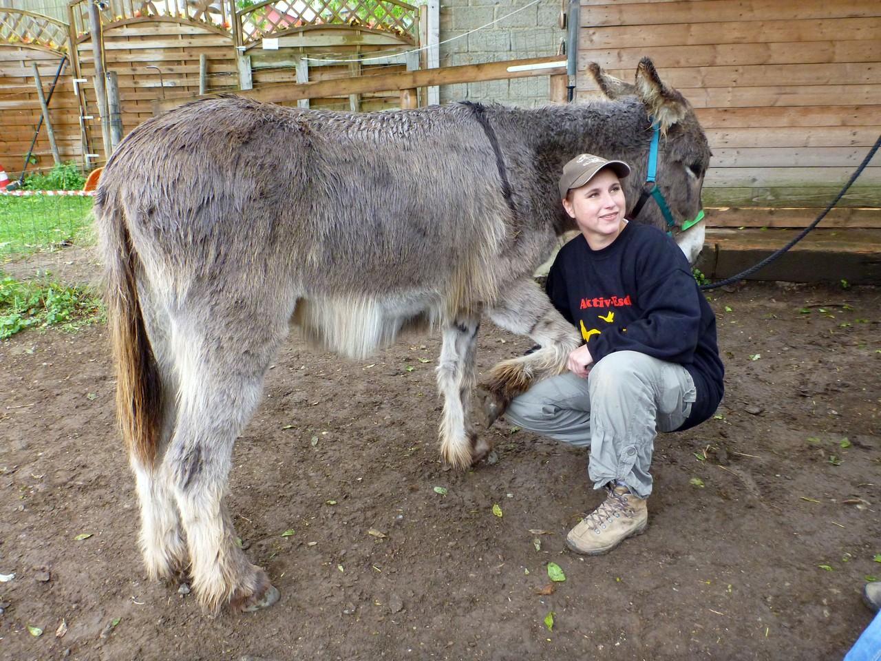 Judith Schmidt erklärt, wie man Hufe auskratzt, so dass es dem Esel dabei nicht unangenehm ist und er kooperativ bleibt. Foto: Brigitte Manser