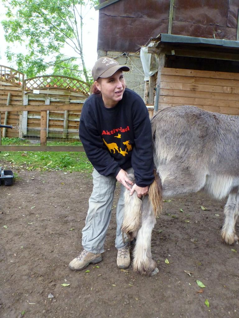 Judith Schmidt erklärt den Unterschied von Natural Horsemanship und ihrer eselfreundlichen Methode, das Hinterbein brav zu geben. Foto: Brigitte Manser