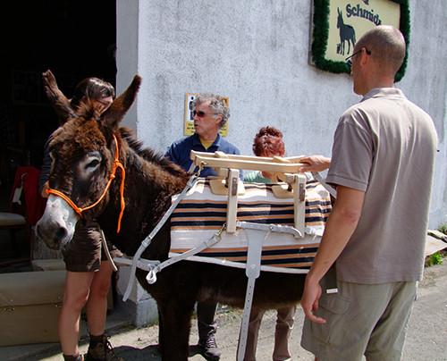 2014: Aus Flandern reisten Interessenten mit dem Esel an, um den Packsattel zu testen.