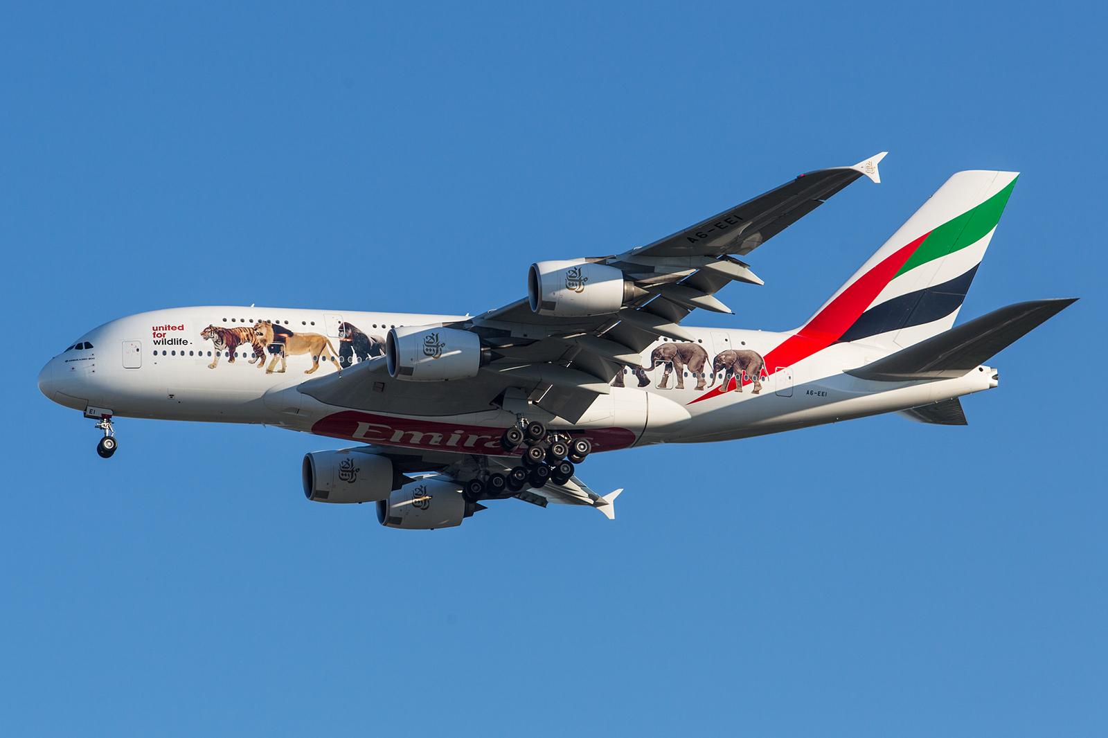 Die Karawane auf einem A 380 der Emirates.