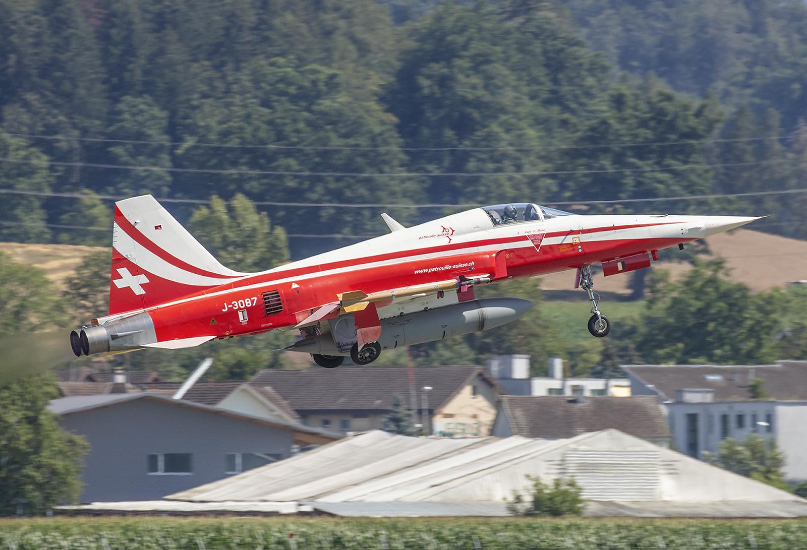 Da nur noch wenige Exemplare der F-5 zur Verfügung stehen, fliegen nicht nur mehr Graue.
