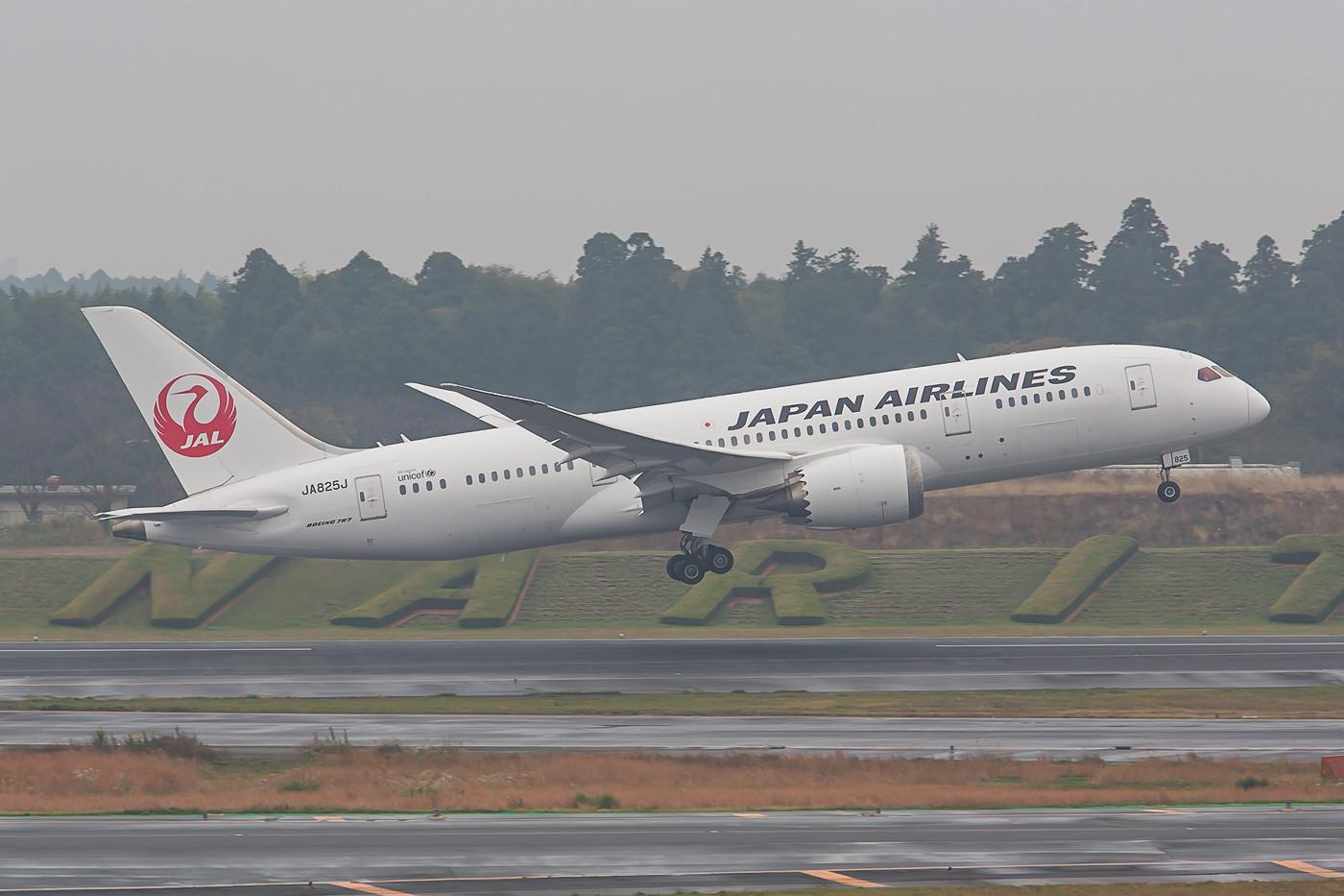 In Japan verfügt jeder Zivilflugahefen über einen von oben lesbaren Schriftzug. Die Hecke in Narita, hier mit der JA825J ist aber nahezu einmalig.