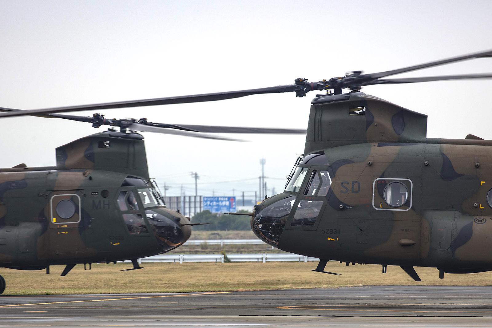 """Zwei """"Chinooks"""" wöhrend der Rundflüge."""