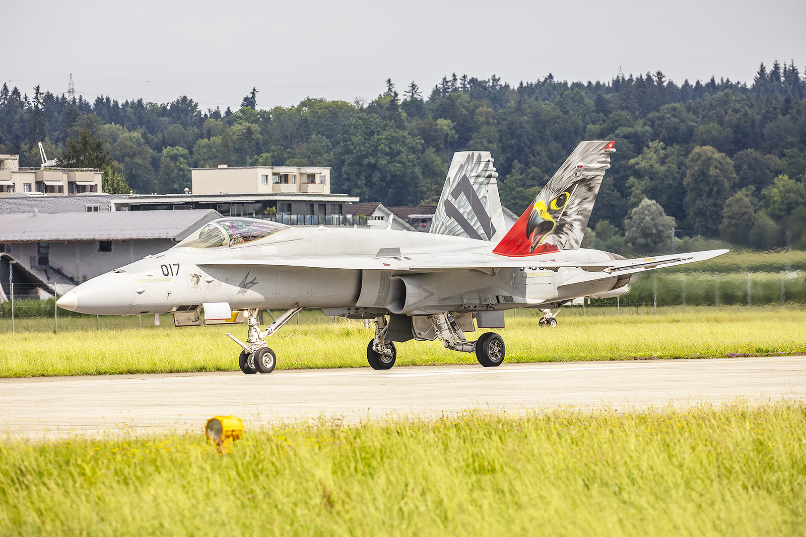Die derzeit noch aktiven drei Hornetstaffeln haben alle eine bunte Maschine mit ihrem Staffeltier.