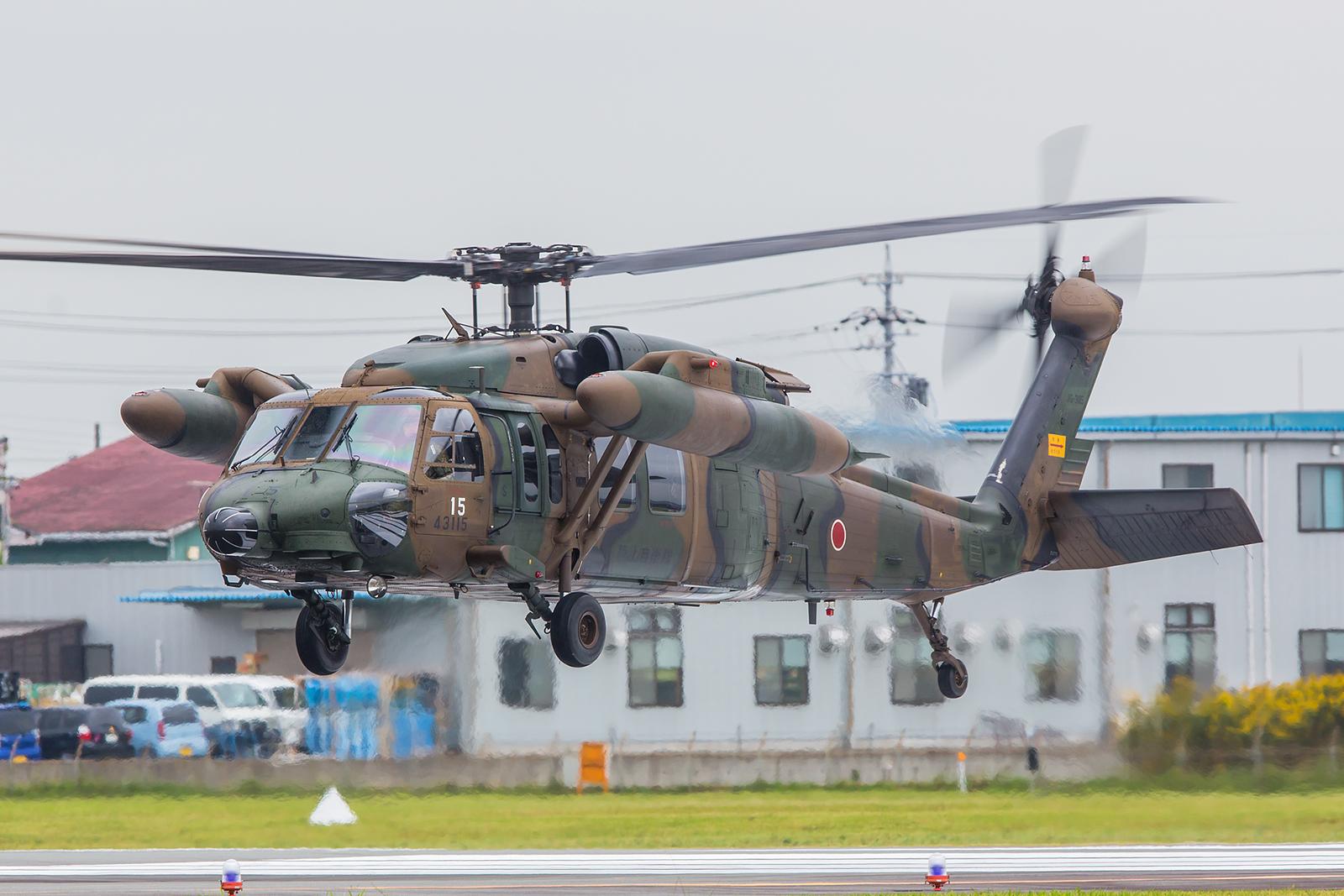 Zwei UH-60 Blackhawk waren an diesem Tag unterwegs.
