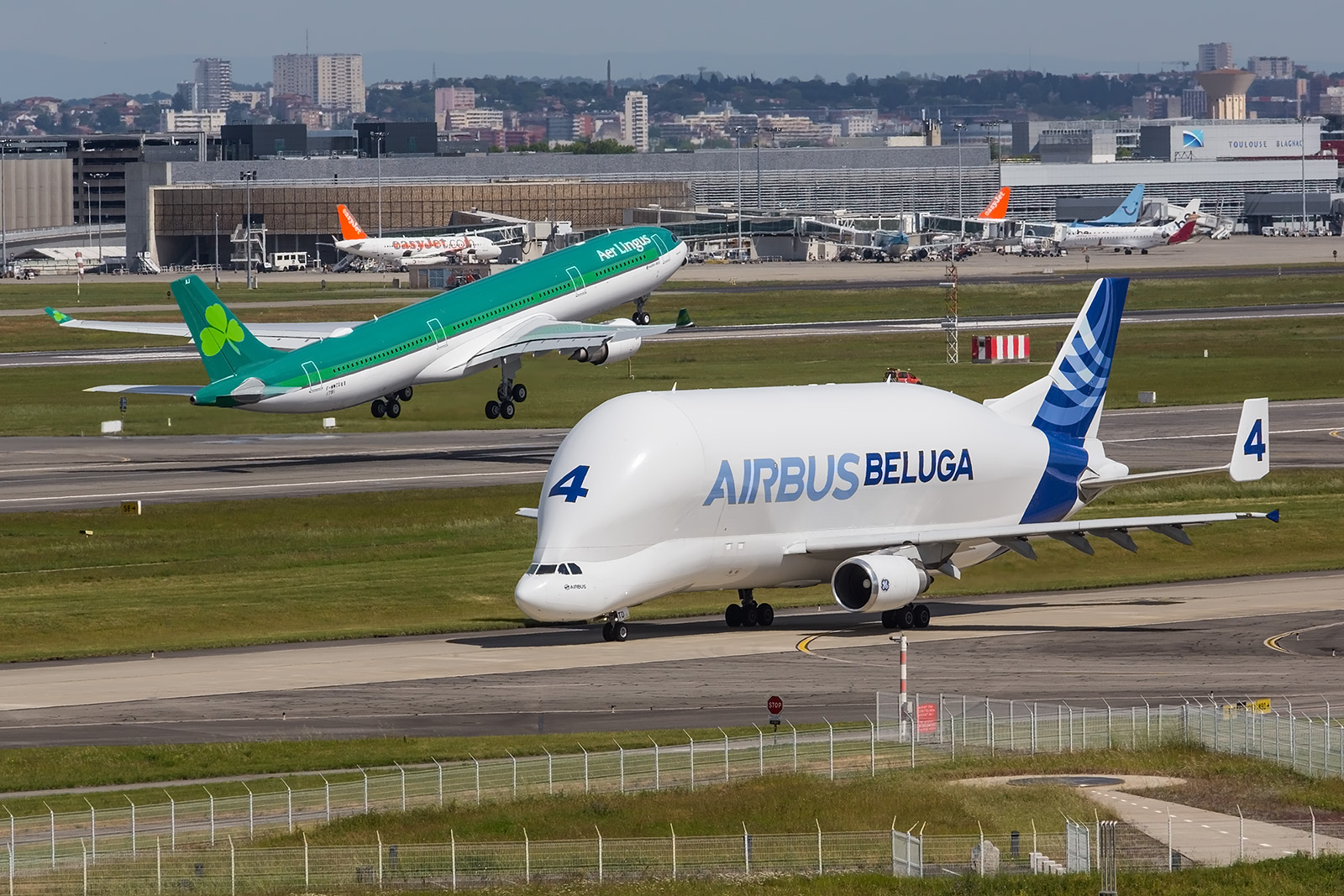 Die Belugas auf Basis der A300 werden bald durch modernere Spezialtransporter auf Basis der A330 ergänzt bzw. ersetzt.