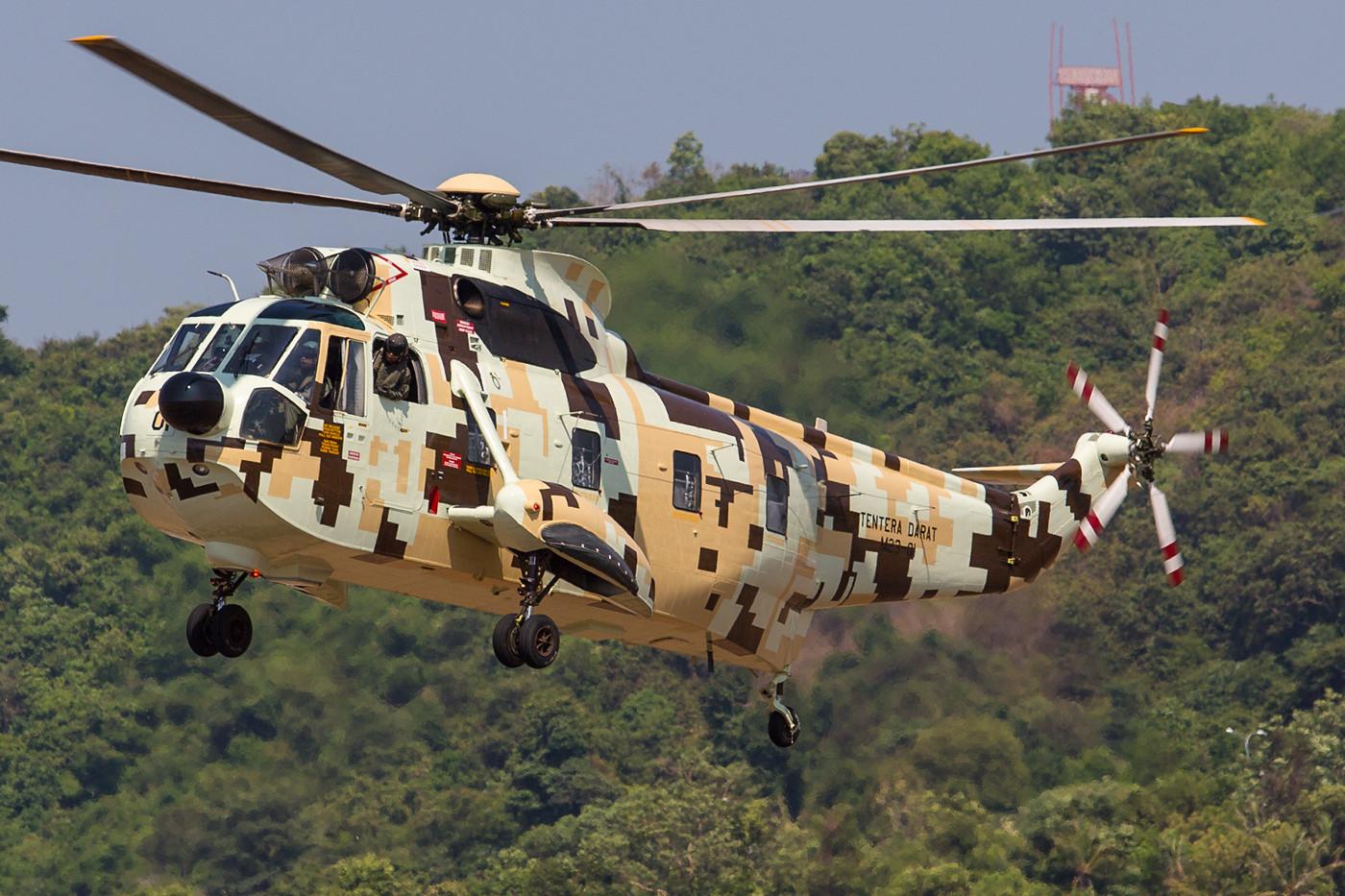 """Sikorsky S-61 """"Nuri"""" der Army. Die Helikopter können seit einem Upgrade auch mit Maschinengewehren in den Türen bewaffnet werden."""