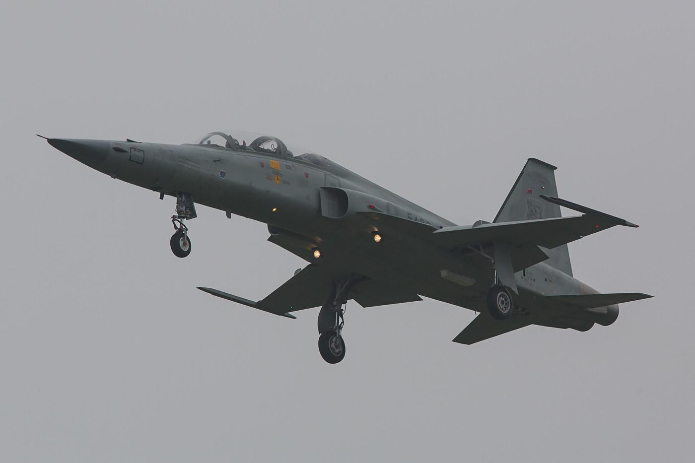 Aus Tainan kamen insgesamt sechs F-5F Tiger II zum Low Approach.