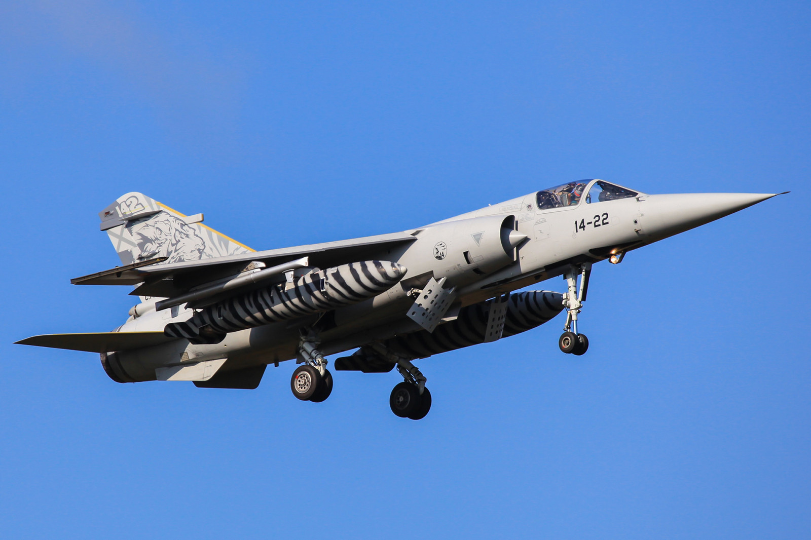 Die C.14-41 bei der Landing wärend des Tiger Meet 2009.