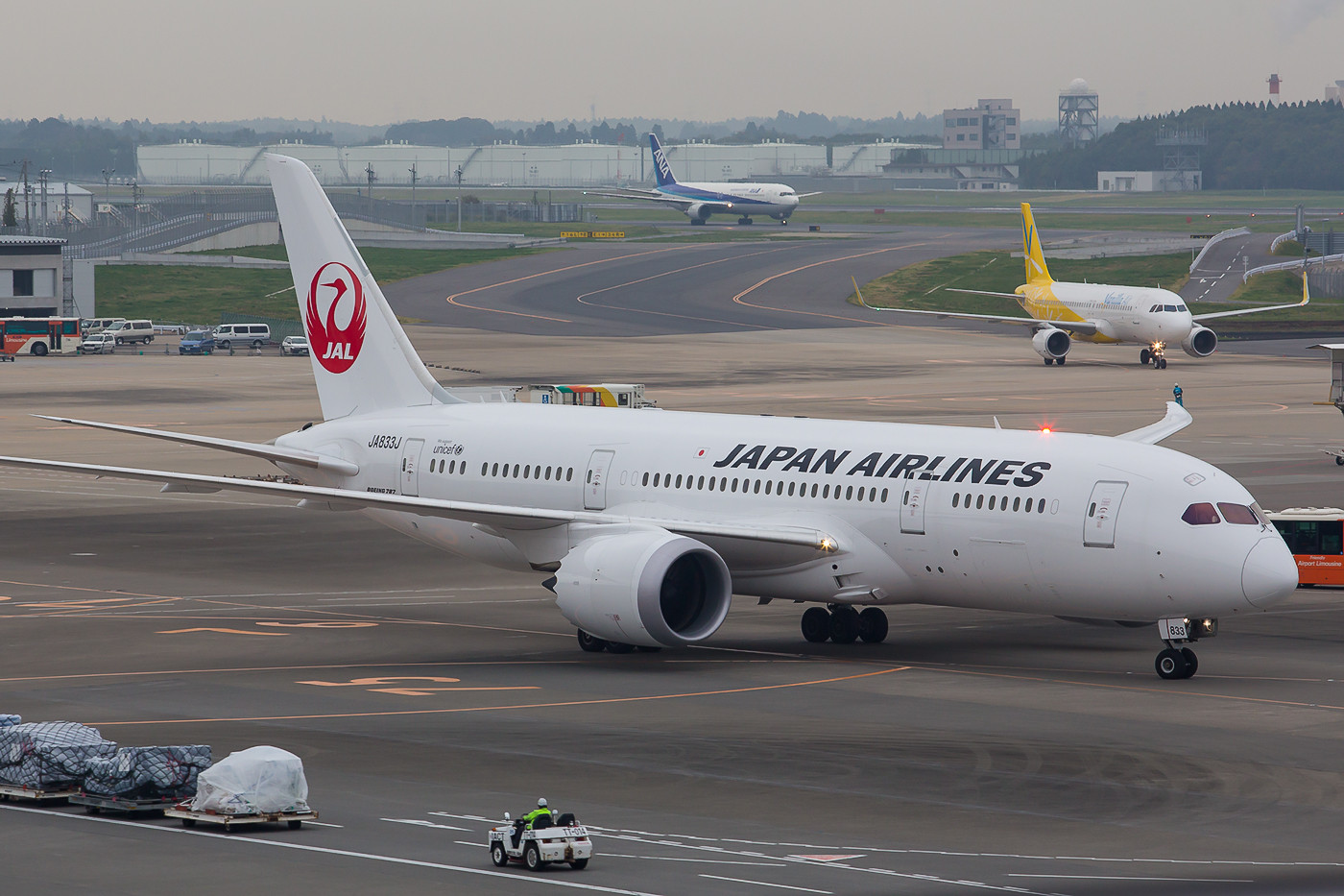 Die Dreamliner der JAL sind im Gegensatz zu denen der ANA vorallem im Intercontinentalverkehr eingesetzt.