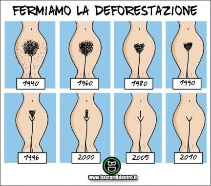 Fermiamo la deforestazione