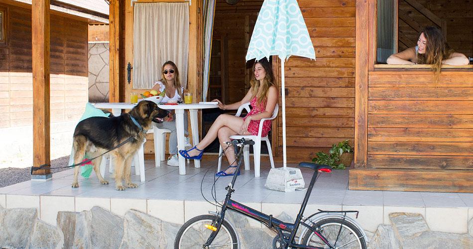 2 chicas y un perro en el bungalow grande del camping