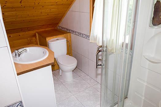 Vistas al lavabo y su ducha de hidromasaje