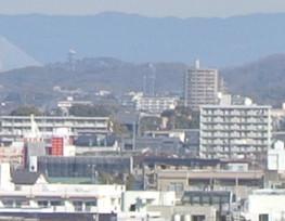 中央にある黒い屋根がおそらく「大樹寺」