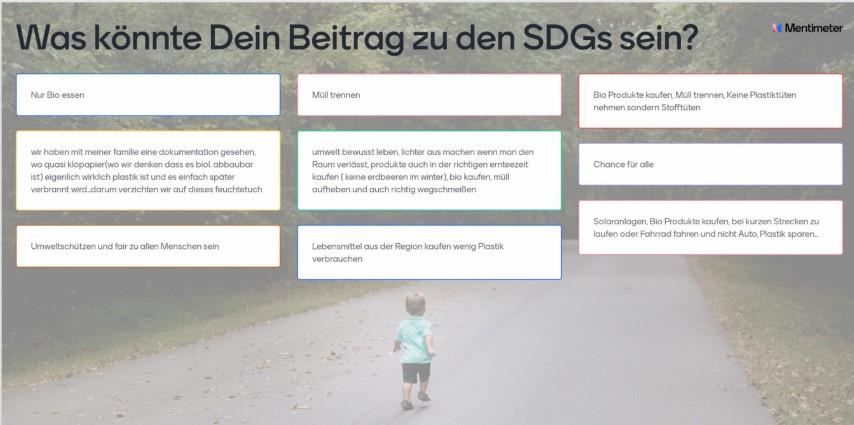 Was könnte dein Beitrag zu den SDGs sein?