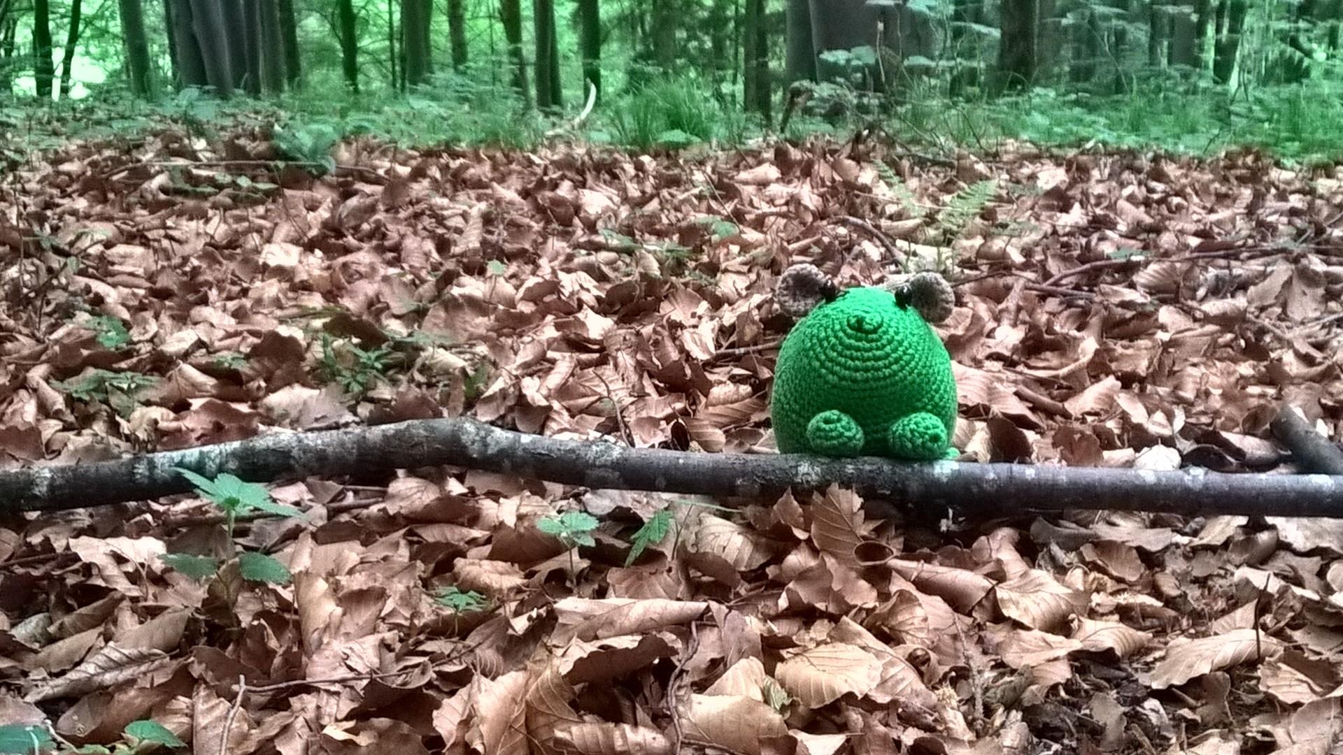 Herbert, dem Klassenhamster der  7 A, gefällt es im Bergwald