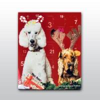 Adventskalenderbild mit zwei Hunden, einem Pudel und einem Cockerspaniel